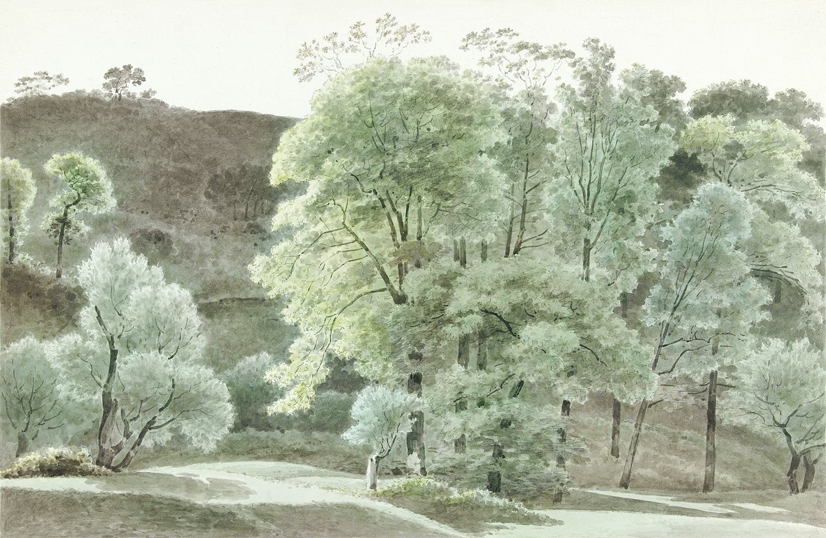 Bomen in de omgeving van Subiaco (trees in the Subiaco area) (1777–1847), Joseph August Knip